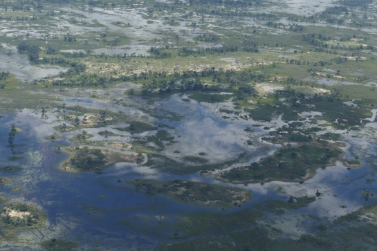 Okavango Delta at the end of the rainy season