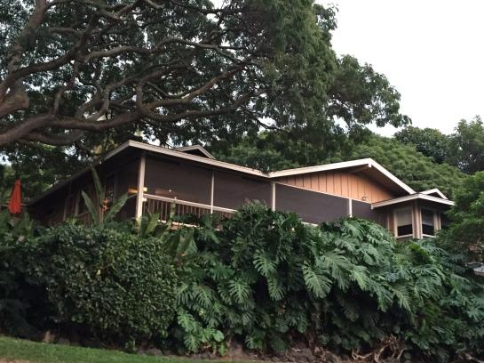 The Ohai House