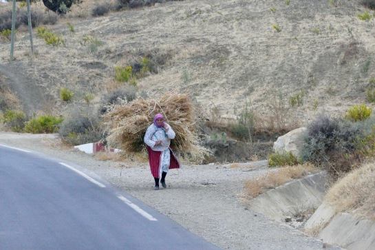 Woman hauling feed for her animals