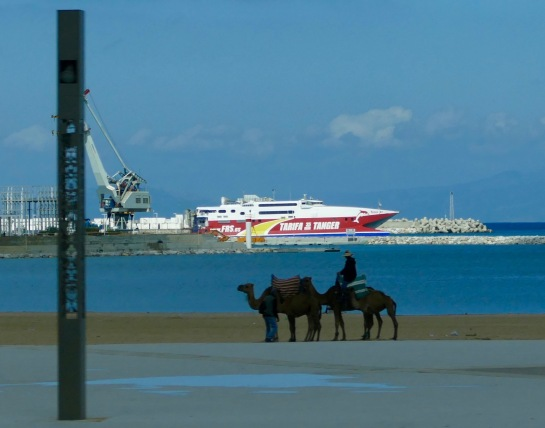 Port of Tanger - in town.