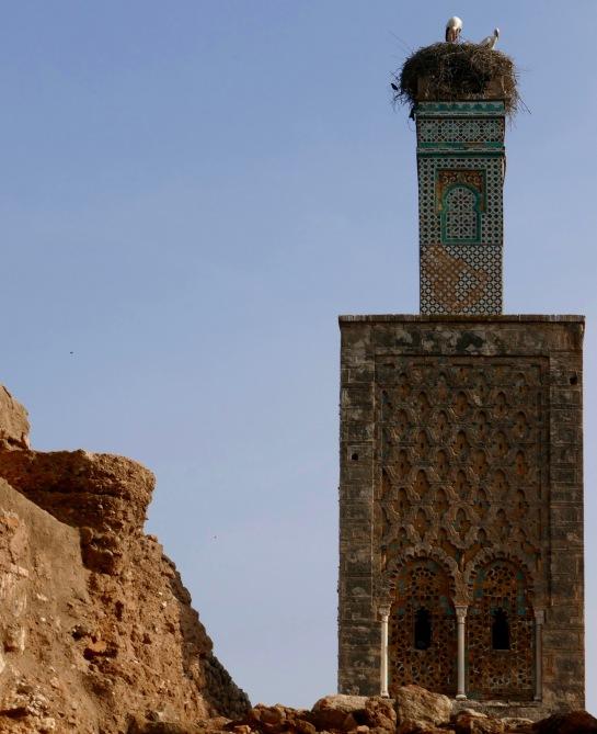 Minaret now hom.e to storks